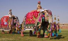 На Шри-Ланке во время фестиваля слоны растоптали людей