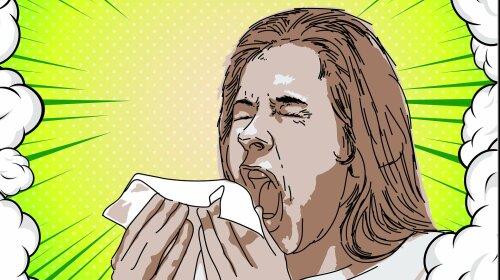 Как аллергикам проветривать квартиру во время карантина - ответ доктора Комаровского