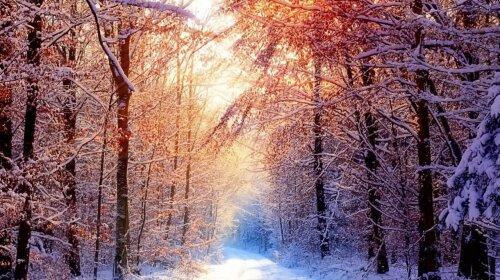 16 декабря: какой сегодня праздник, основные приметы и запреты на этот день