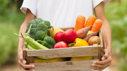Лучше любой диеты: ученые назвали продукт, который защитит от ожирения