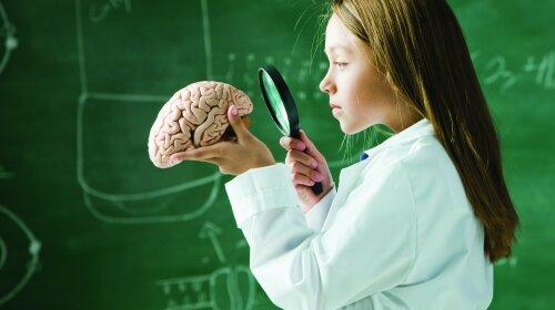 issledovanie-mozga