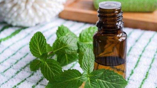 Дихай глибоко: п'ять ефірних олій, які допоможуть при застуді і грипі