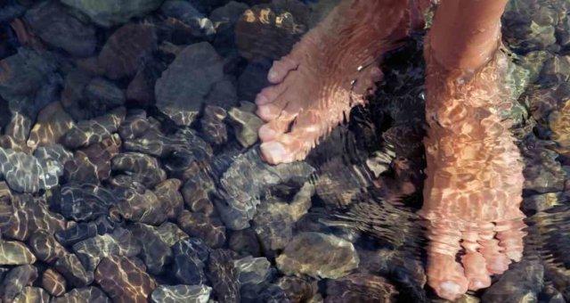 укусы морских блох ребенка покусали морские блохи