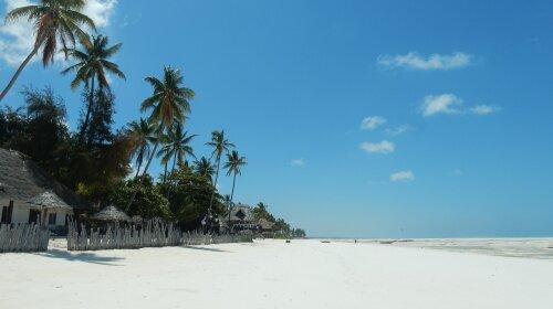 7 Самых интересных мест на острове Занзибар: как получить от путешествия максимум