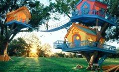 детский-дом-на-дереве