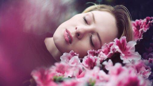 Комнатные цветы для хорошего сна