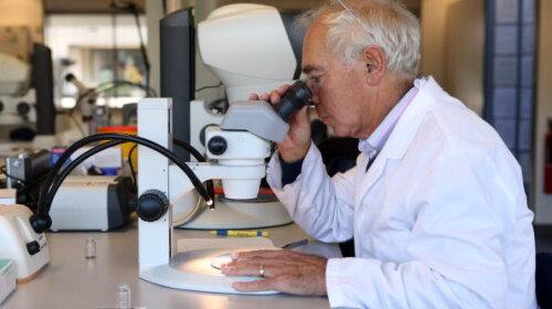 Медики показали, как коронавирус поражает легкие (ВИДЕО)