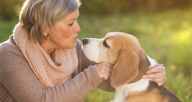 Собаки продлевают жизнь человека