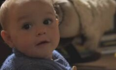 Пара из Великобритании полтора года скрывает пол своего ребенка