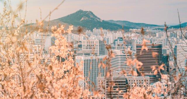 Южная Корея, сеул, туры, фото, бтс