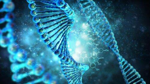 Генетик розповів, наскільки точний ДНК-тест