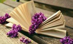 book-read-