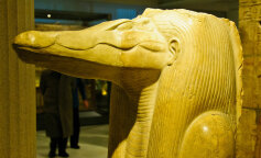 Вчені розкрили загадку стародавньої єгипетської мумії
