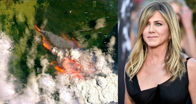 гомес, кидман, кроул, энистон, пожары в австралии, австралия горит, фото, видео