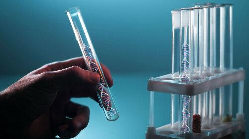 Какими бывают тесты ДНК: ответ эксперта