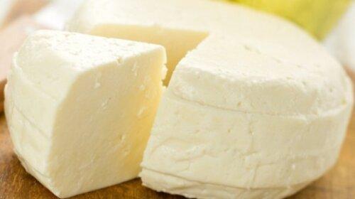 Как приготовить вкуснейший французский сыр в домашних  условиях -  легкий и самый быстрый способ