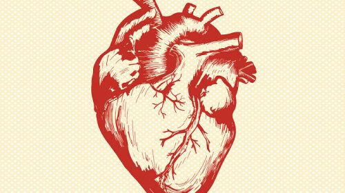 Как сохранить сердце здоровым: отвечает доктор высшей категории