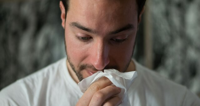 аллергия, фото, видео, врач-аллерголог, лето