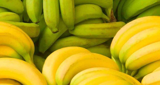 Green and yellow bananas