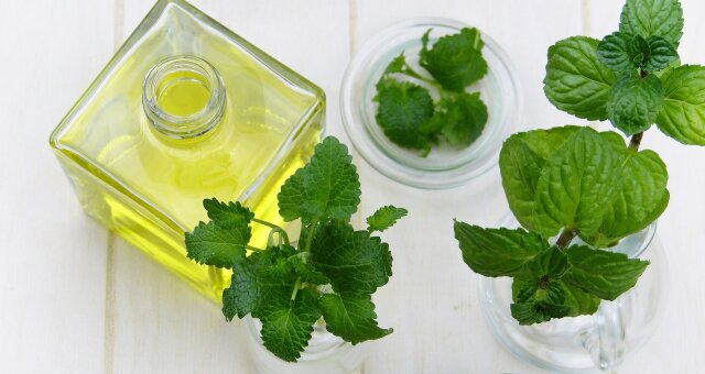 Эфирные масла антисептики для лечения простуды и ОРВИ