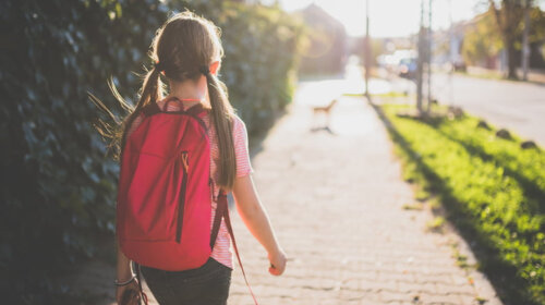 Был шрам на шее: в Донецкой области пропала 13-летняя девочка – уже объявлен розыск (ФОТО)