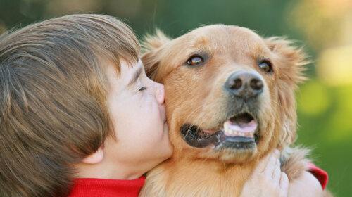 Специалист рассказала, какие домашние животные противопоказаны детям