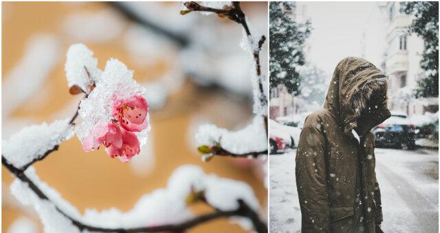 Погода в Украине в марте 2020