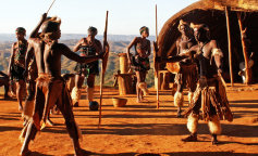 Вчені досліджували отрута, якою мажуть кінці стріл аборигени