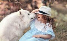 породы собак, которые не вызывают аллергию