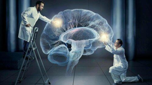 Вченим вдалося зберегти мозок живим поза тіла