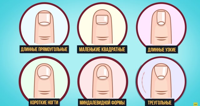 Тест, ногти